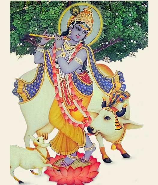 lord krisha idol